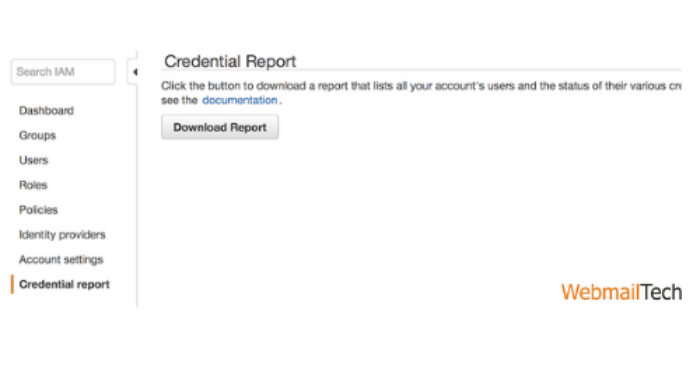Click the Download Report button.